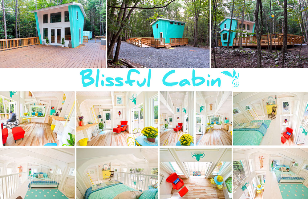 cabin-portfolio-collage